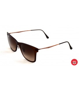 Rayban Clubmaster 4210 6122/13